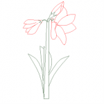 Flower elevation